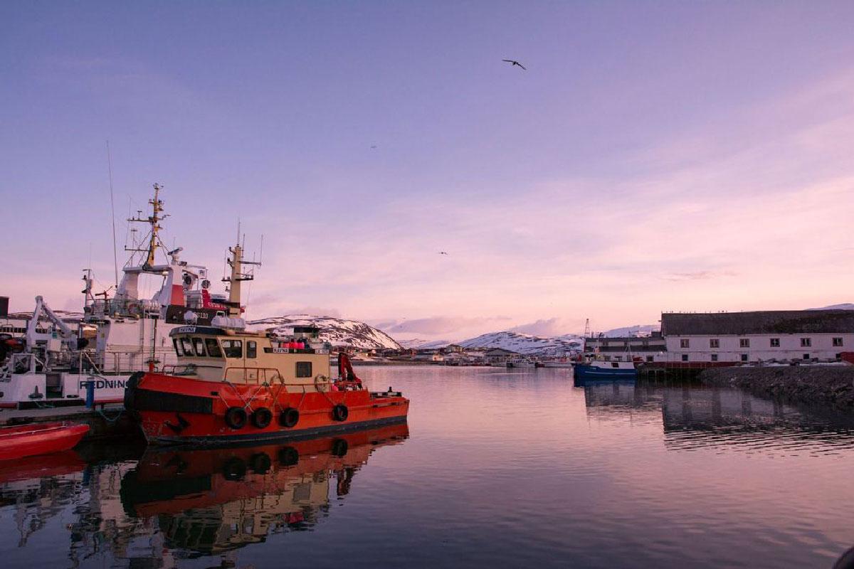 Fiskebåt på fjorden