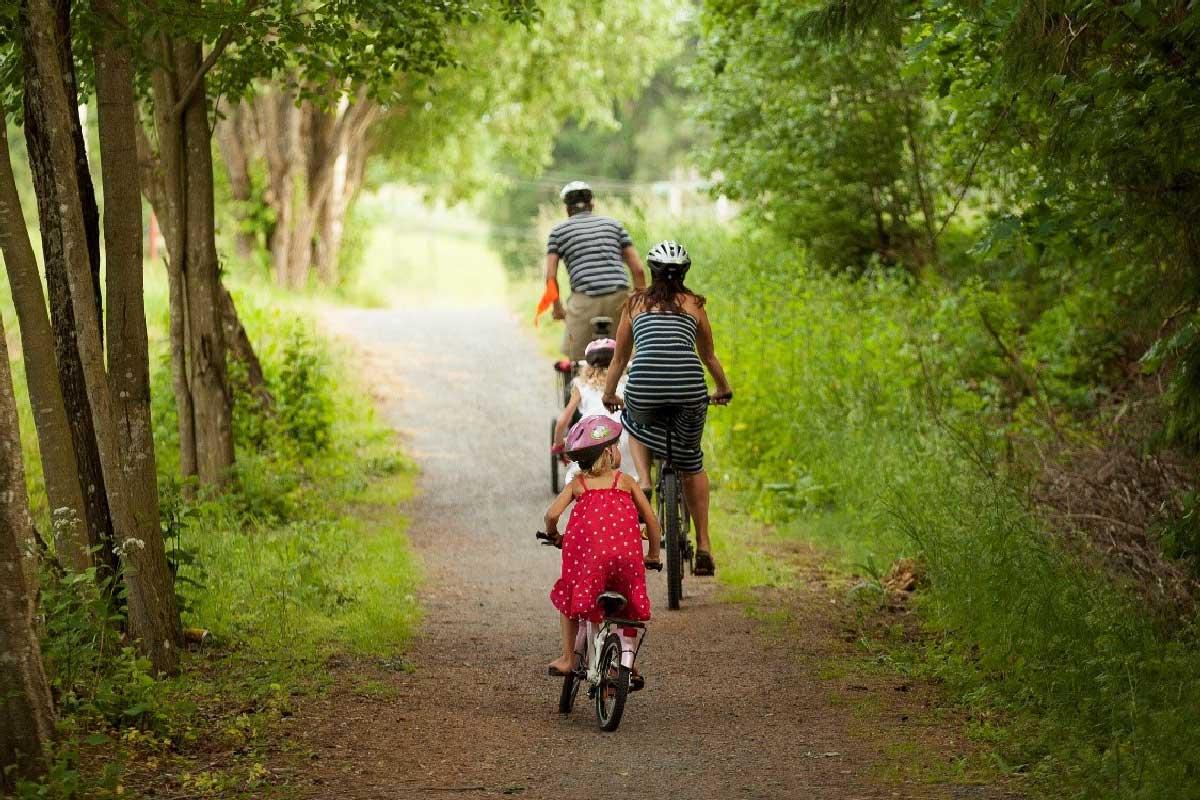 Familie sykler i skogen