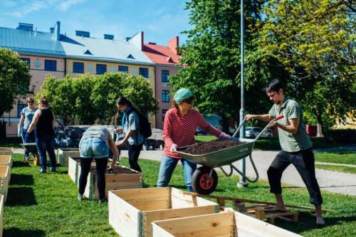Vil styrke sosial bærekraft i norske kommuner
